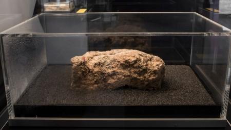 Στο μουσείο του Λονδίνου ένα... βουνό λίπους!