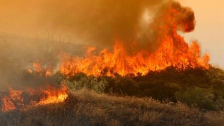 Πυρκαγιά στα Λεχαινά Ηλείας