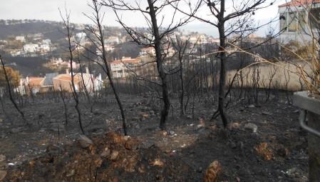 Η «Αποστολή» στηρίζει 400 πυρόπληκτες οικογένειες στους Δήμους Ραφήνας και Μαραθώνα