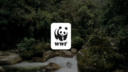 WWF: Αυτή είναι η τελευταία γενιά που μπορεί να σώσει τον πλανήτη