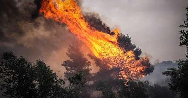 Μεγάλα προβλήματα από ισχυρή πυρκαγιά στη Σητεία Κρήτης