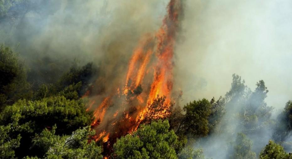 Πολύ υψηλός κίνδυνος πυρκαγιάς και αύριο