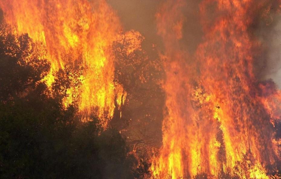 Έκτακτα μέτρα από τον Δήμο Αθηναίων λόγω υψηλού κινδύνου πυρκαγιάς