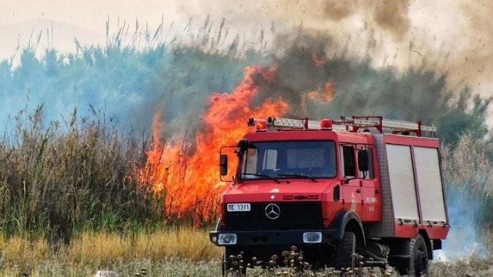 Πυρκαγιά ανάμεσα στην περιοχές Κοτύχι και Αρετή στην Ηλεία