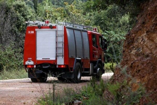 Ισχυρή πυρκαγιά στο Λάνθι της Ηλείας