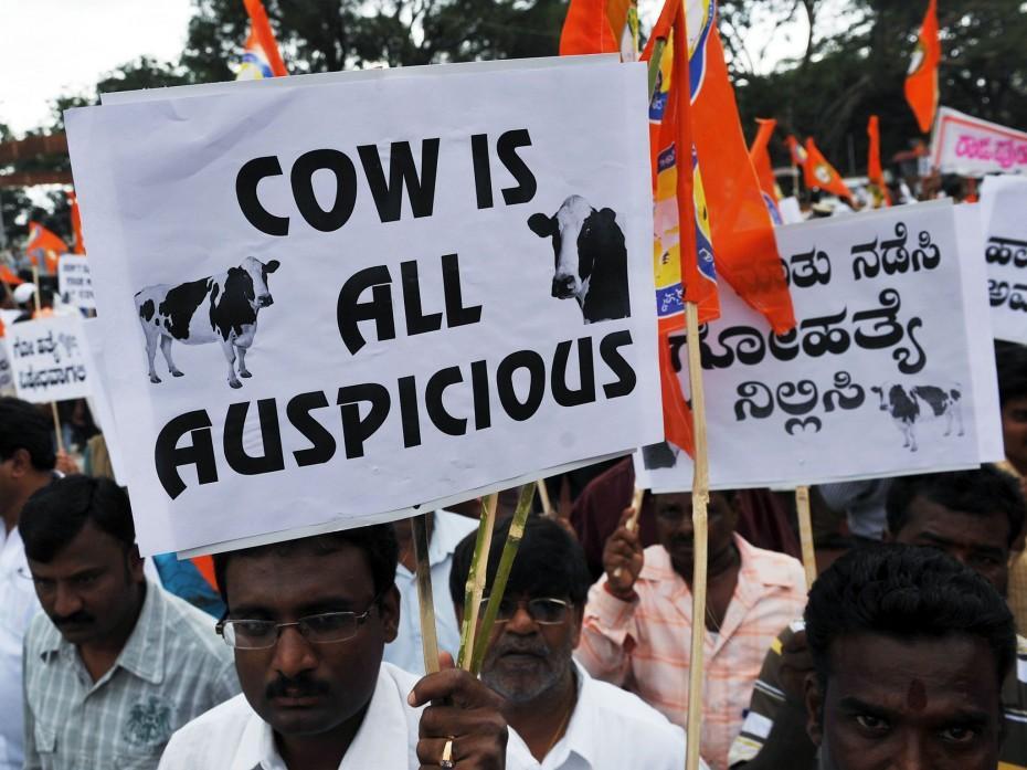 Αιματηρές διαδηλώσεις στην Ινδία για ένα σφαγείο αγελάδων