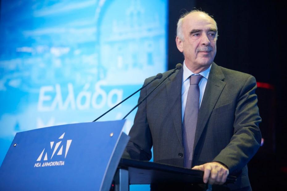 Μεϊμαράκης: Πρόωρες εθνικές εκλογές με μεγάλη νίκη της ΝΔ στις ευρωεκλογές