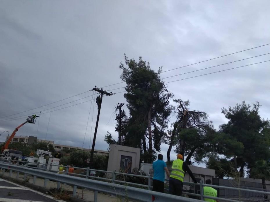 ΑΔΜΗΕ: Πότε θα ομαλοποιηθεί η ηλεκτροδότηση στη Χαλκιδική
