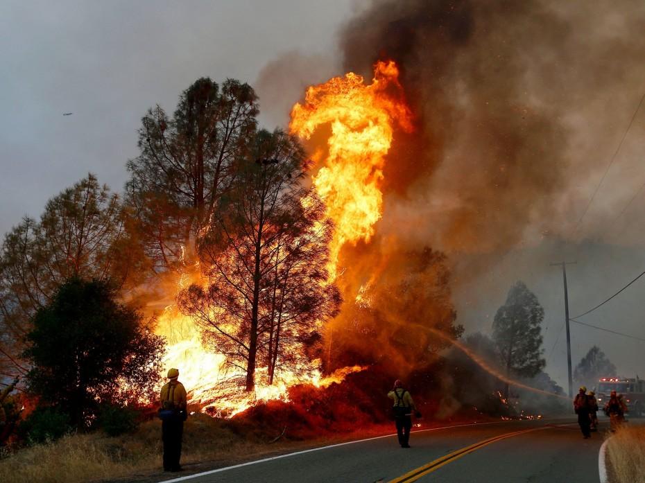 Στις φλόγες η Κεφαλονιά - Τρία μέτωπα στην Εύβοια