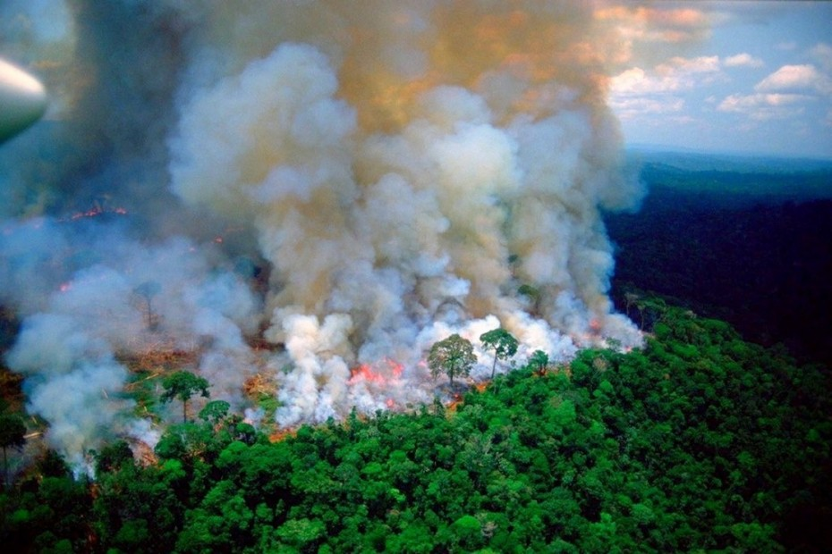 Παγκόσμιος συναγερμός για τον φλεγόμενο Αμαζόνιο