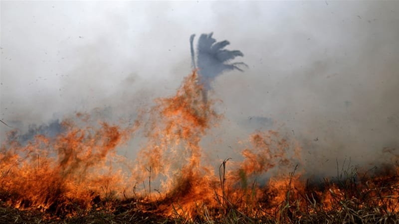 Μήνυμα του Πάπα για τις πυρκαγιές στον Αμαζόνιο