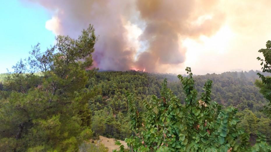 Κρανίου τόπος η Εύβοια από την πυρκαγιά