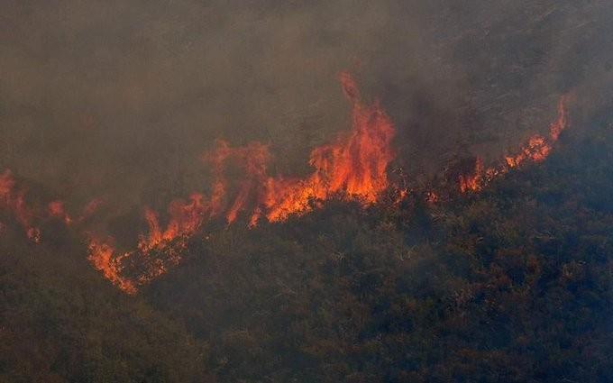 Μεγάλη πυρκαγιά στον Καρβελά της Λακωνίας