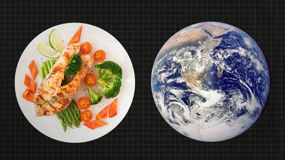 Έρευνα: Μια δίαιτα vegan θα ήταν καλή για την κλιματική αλλαγή