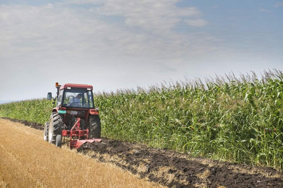 Αναβαθμίζονται οι υπηρεσίες του e-ΕΦΚΑ για αγρότες