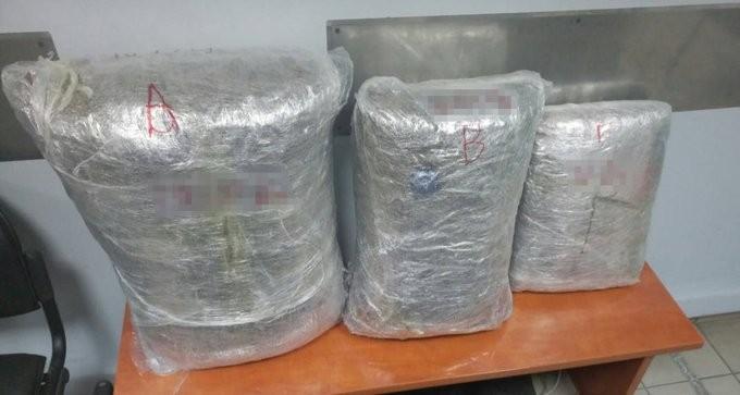 Εξάρθρωση σπείρας καλλιέργιας κάνναβης σε Άρτα, Πρέβεζα, Αττική - 8 συλλήψεις