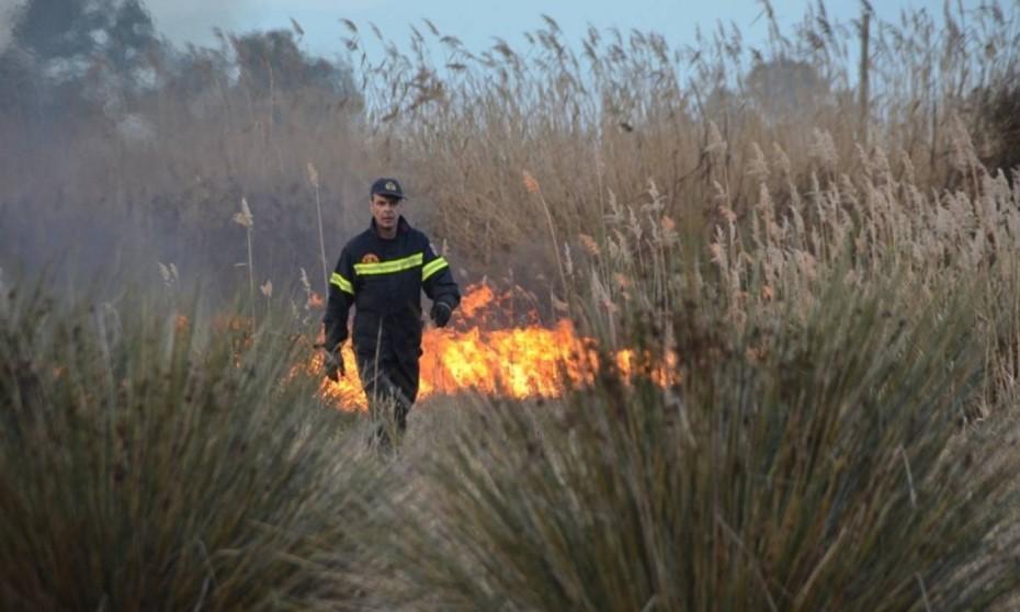 Άγ. Θεοδώροι Κορινθίας: Υπό έλεγχο η φωτιά στην Άνω Κόκκινη Σπηλιά